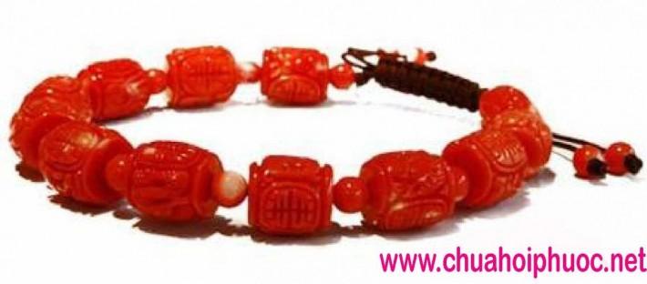 5. Xich chau