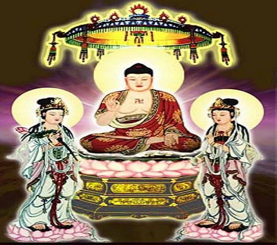 Hinh Cai